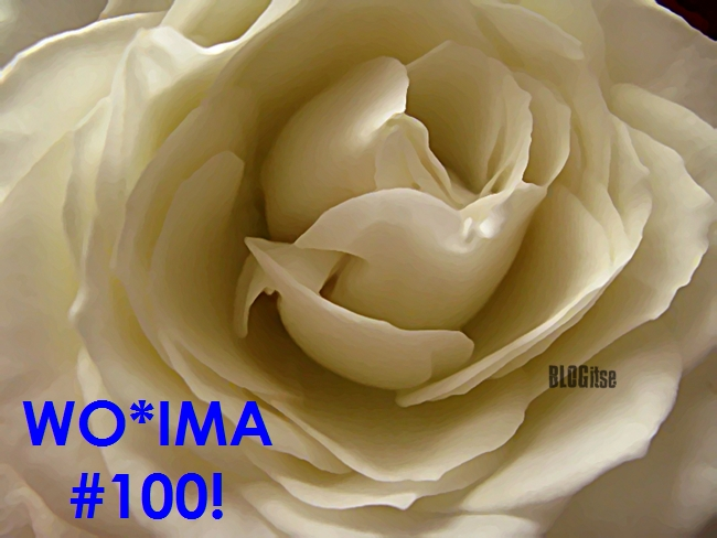 WOIMA #100 by BLOGitse