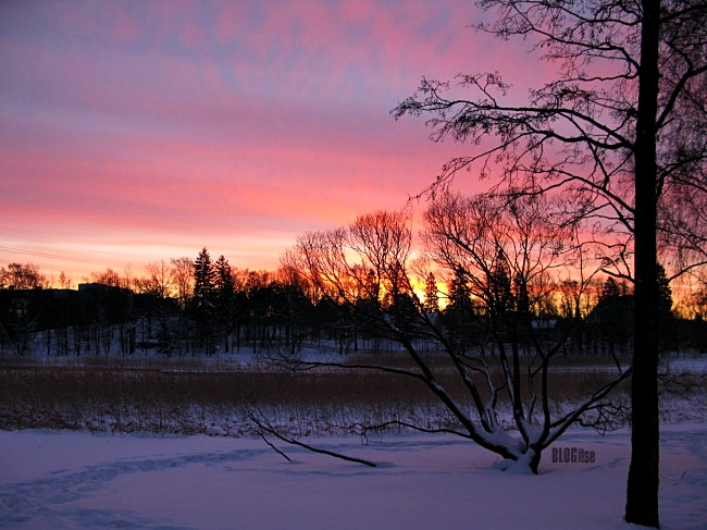 sunrise Helsinki 28.1.12 at 8 34 am by BLOGitse