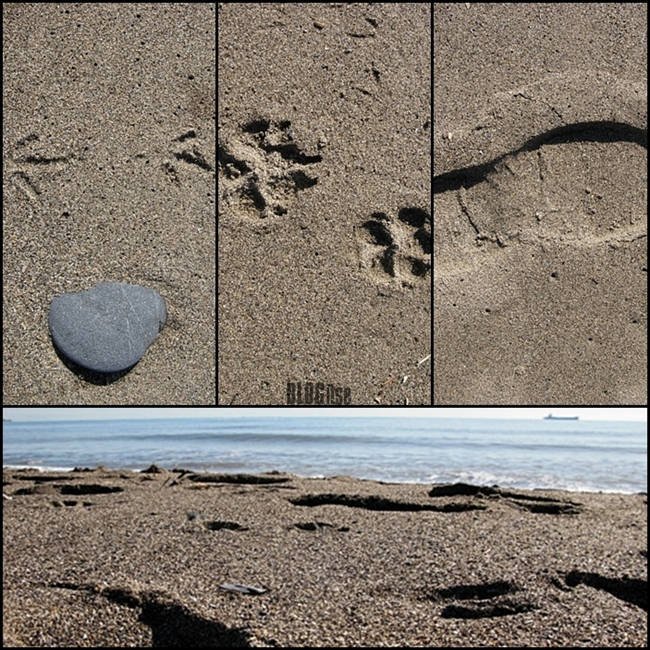 Malaga beach foot prints by BLOGitse