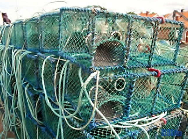 lobster traps by BLOGiise