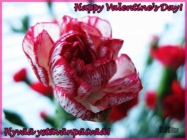 Valentine's Day Ystävänpäivä 14.2.2014 by BLOGitse