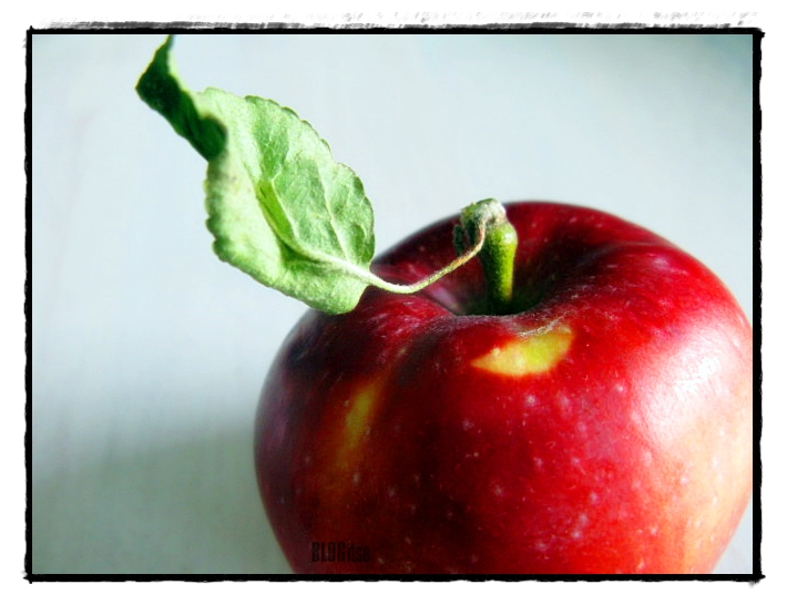 eat me said red apple by BLOGitse