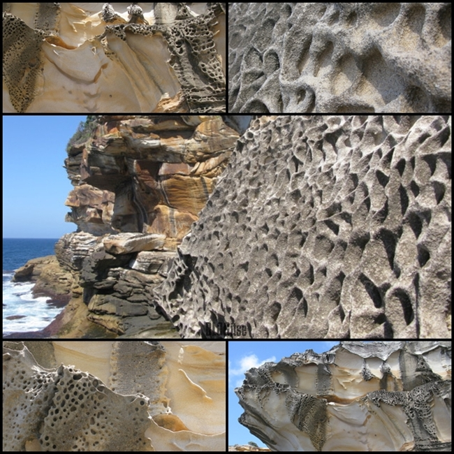 Bronte beach rocks Sydney Australia by BLOGitse