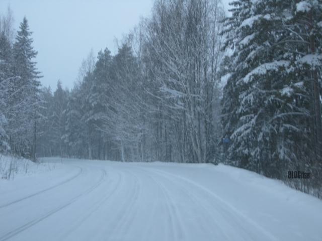 snowy road_1 by BLOGitse