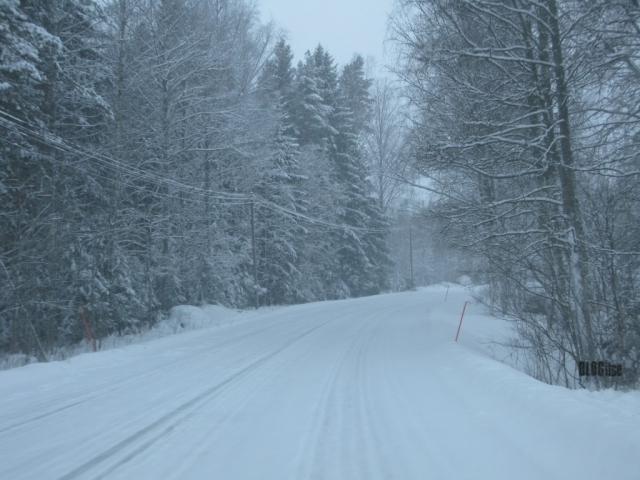 snowy road_2 by BLOGitse