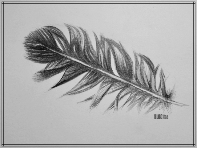 feather-drawn-with-pencil-by-blogitse