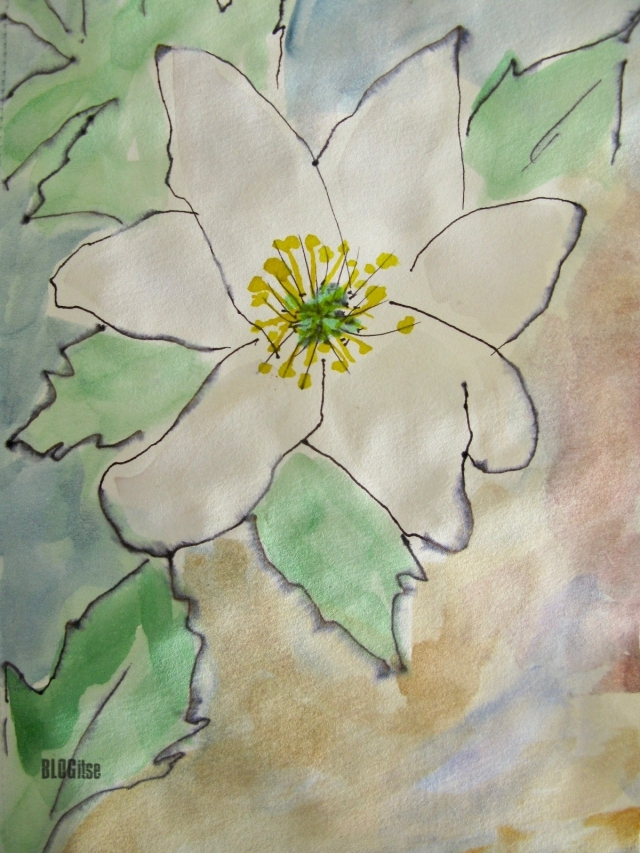 Theme Art challenge May 2017 5 mins_complete wood anemone by BLOGitse