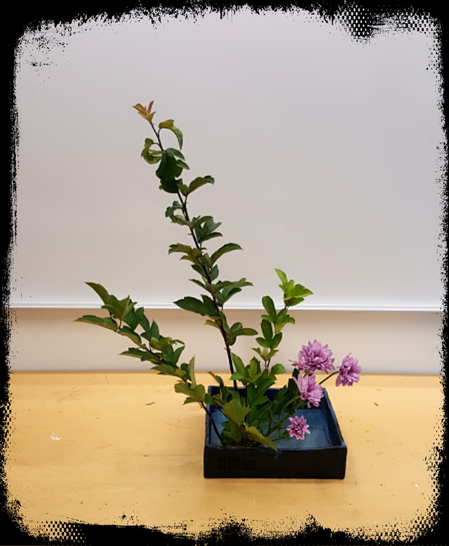 my first ikebana by BLOGitse